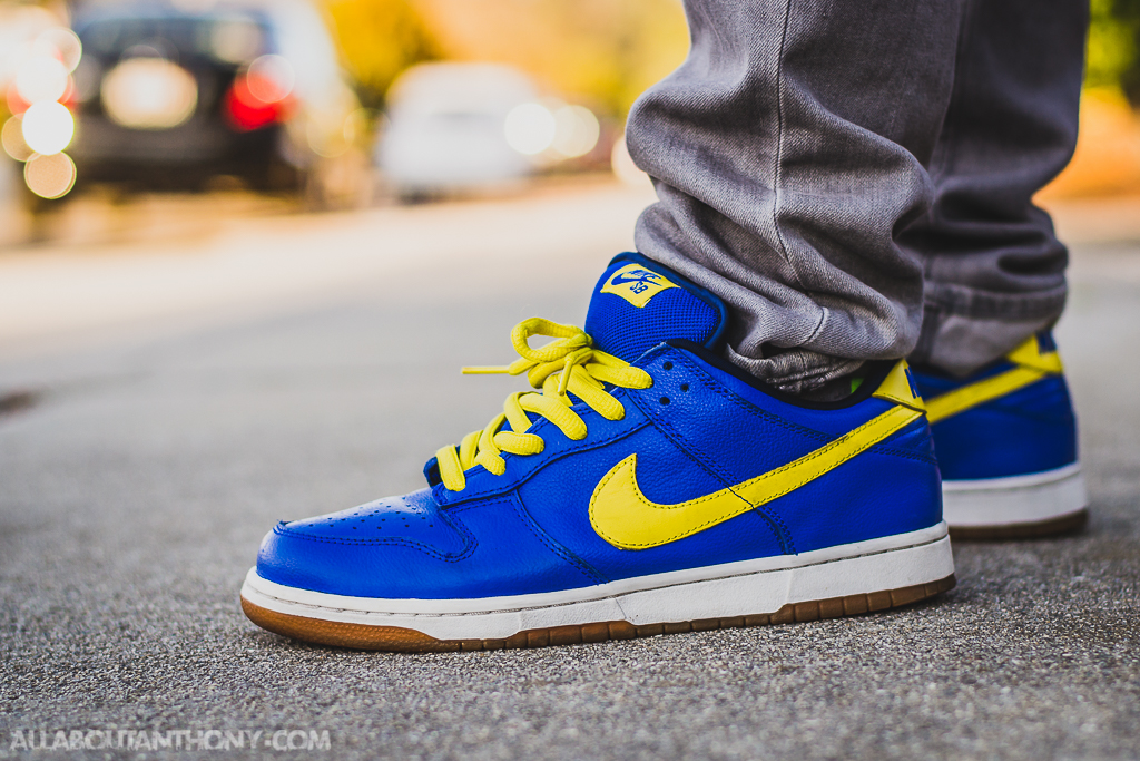 nike dunks junior