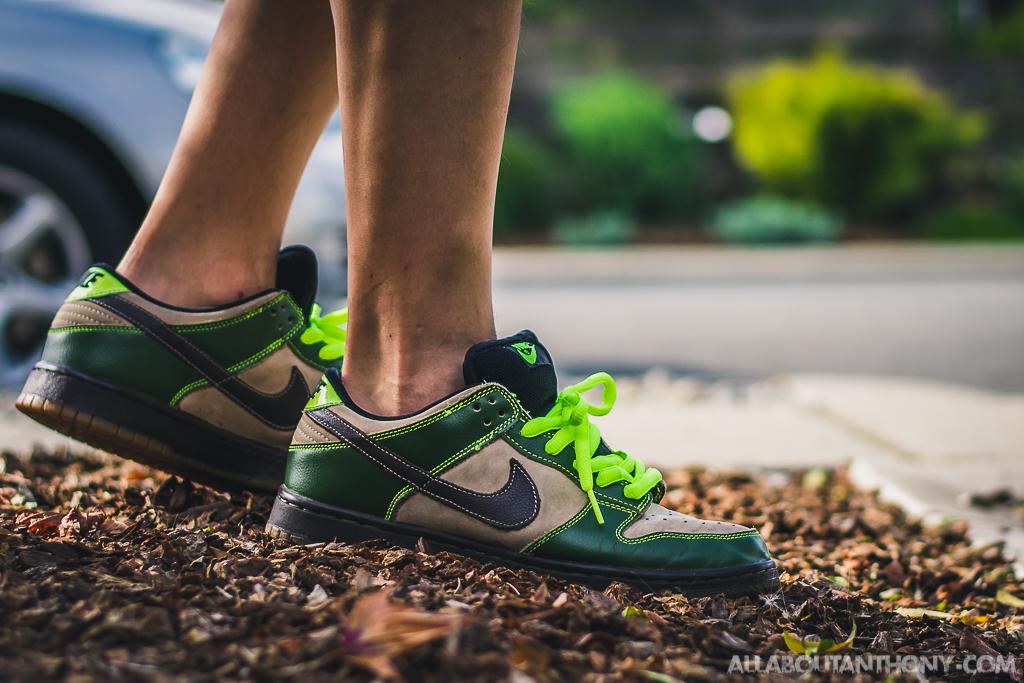 Nike Dunk SB Low Jedi - On Feet Sneaker