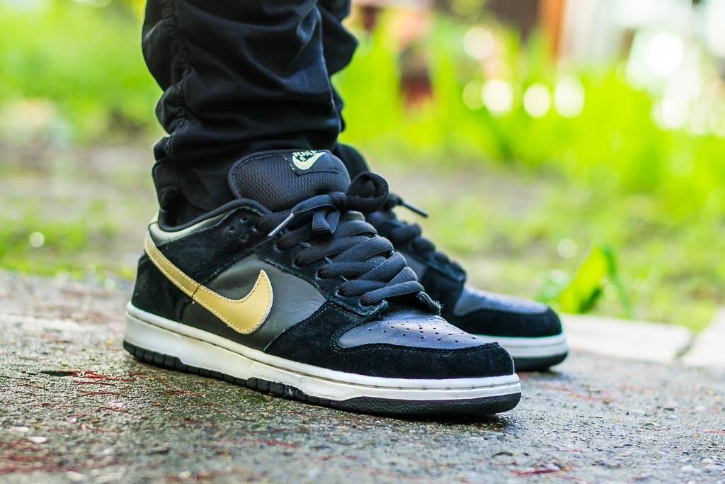 Nike Dunk Low SB Takashi On Feet