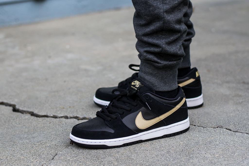 Nike Dunk Low SB Takashi 2018 On Feet